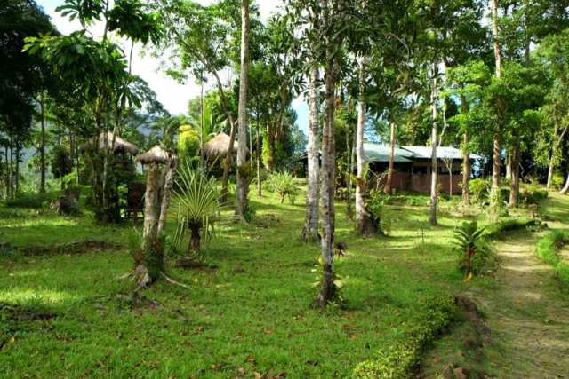 Bambua Nature Cottage - Sabang, Filippine
