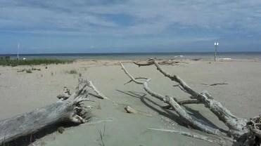 Lido di Spina, Spiaggia