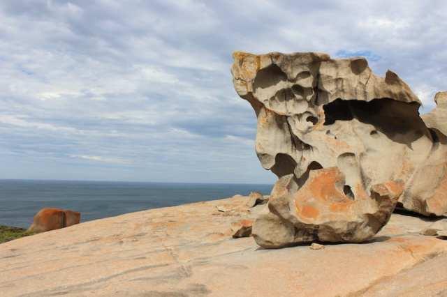 Italian Dreamtime: l'Australia Meridionale - Kangaroo Island