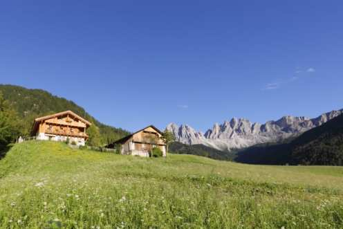 Alto Adige: soggiornare in un maso del Gallo Rosso