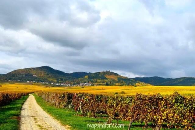 Alsazia, Francia
