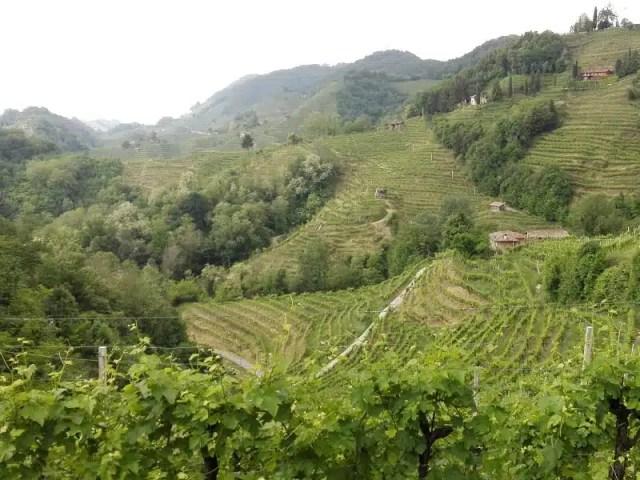 Strada del Vino Conegliano-Valdobbiadene