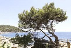 Ronda-da-Calella-a-Llafranc-Photo-Devid-Rotasperti (6)