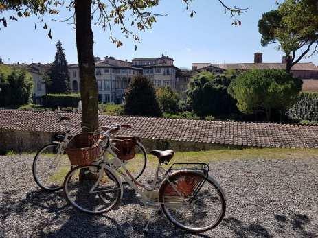 tn_le nostre biciclette