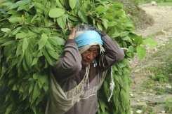 Nepal-foto-Heidi-Busetti (42)