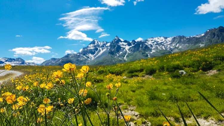 Paesaggio lungo il Sentiero degli Andossi