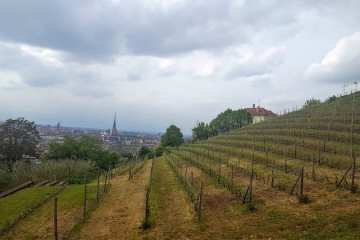 Visitare Torino - Vigna della Regina