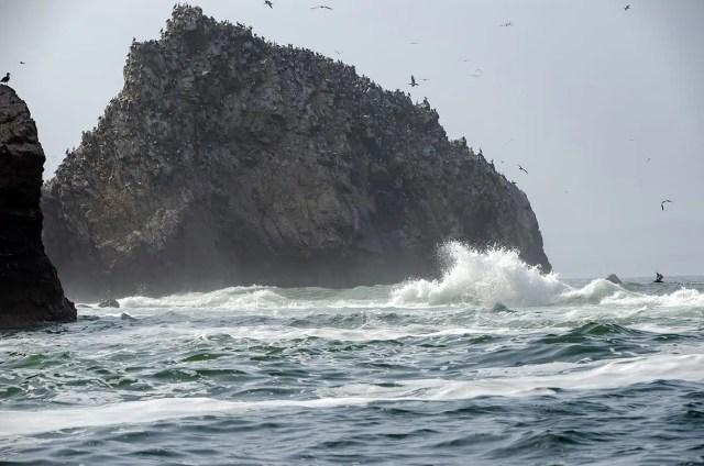 mare alle isole Ballestas