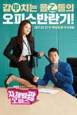 Drama Korea Radiant Office
