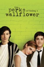 The Perks of Being a Wallflower (2012)