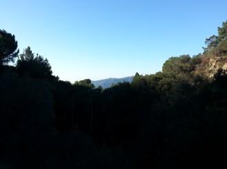 Pickens Canyon 04
