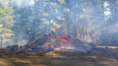 Unlike the previous pictures, this fire will leave very little behind. This was landing slash from logging in the Mad River.