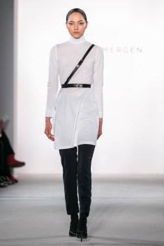 Mergen-1411