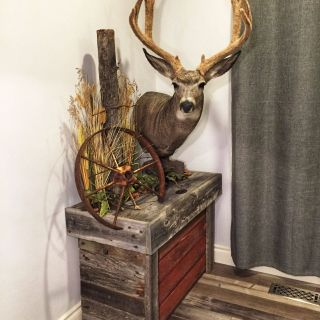 How to Decorate with Deer Antlers Unique Basementmancaveideas
