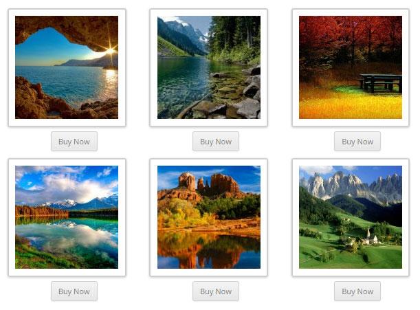 screenshow showing the WordPress Sell Photo plugin demo
