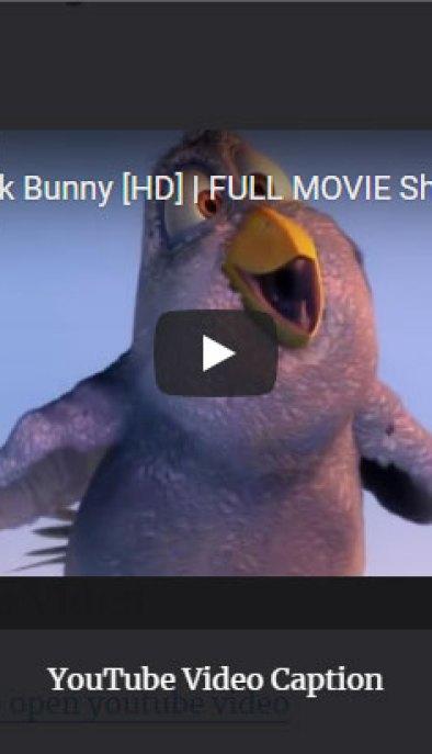 screenshot of YouTube video in lightbox using the WordPress fancyBox plugin