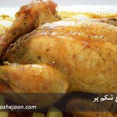 morgh shekampor مرغ شکم پر