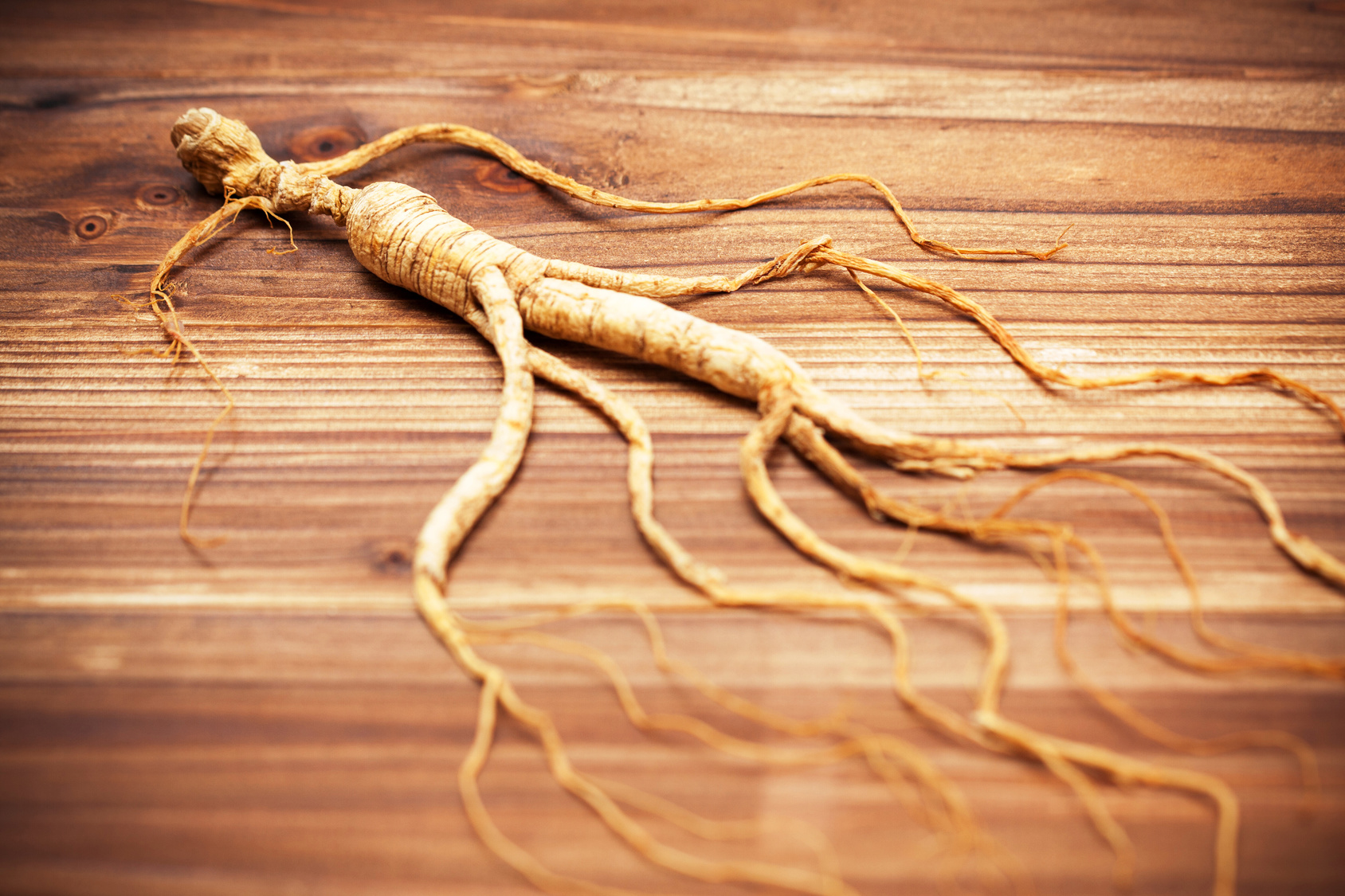 Panax Ginseng Review The Yin Yang Adaptogen For Both