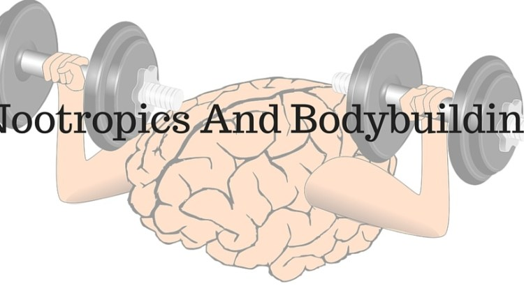 Nootropics And Bodybuilding