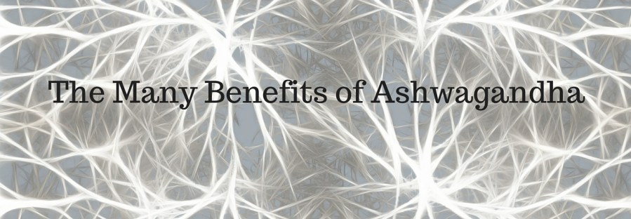 The Many Benefits Of Ashwagandha