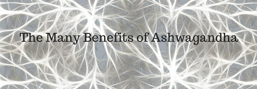 The Many Benefits Of Ashwagandha