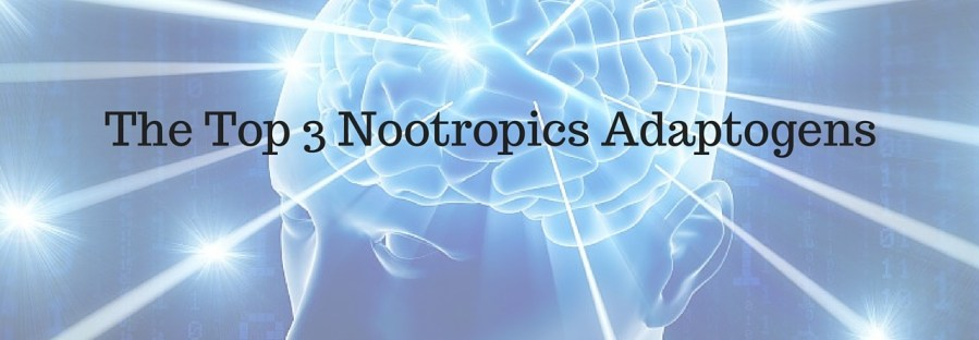 The Top 3 Nootropic Adaptogens