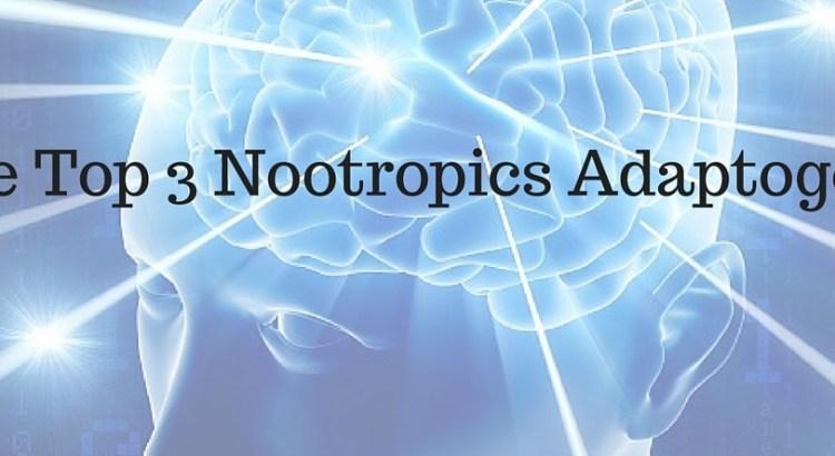 The Top 3 Nootropic Adaptogens