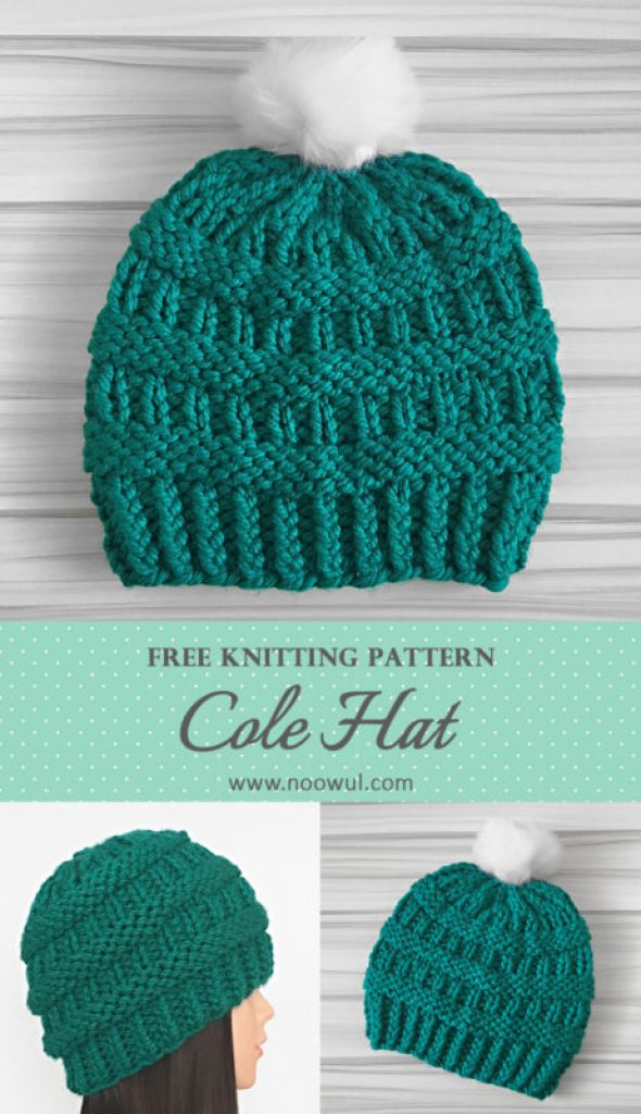 Cole Hat | Free Knitting Pattern on Noowul