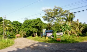 Cahuita - near north end of town