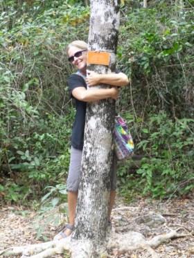 tree hugger - Puerto Morelos