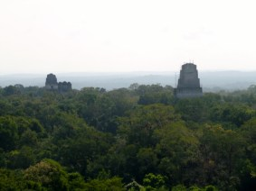 Temples rising above the forest and shrouded in mist at Tikal Mayan ruins