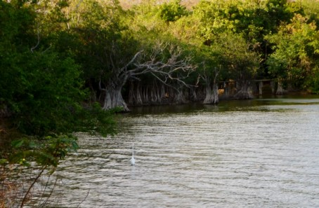 Charco Verde -lagoon at Ometepe