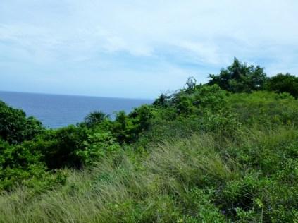 A view from Pumpkin Hill - Utila