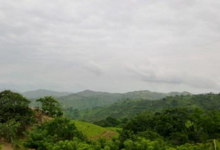 verdant land