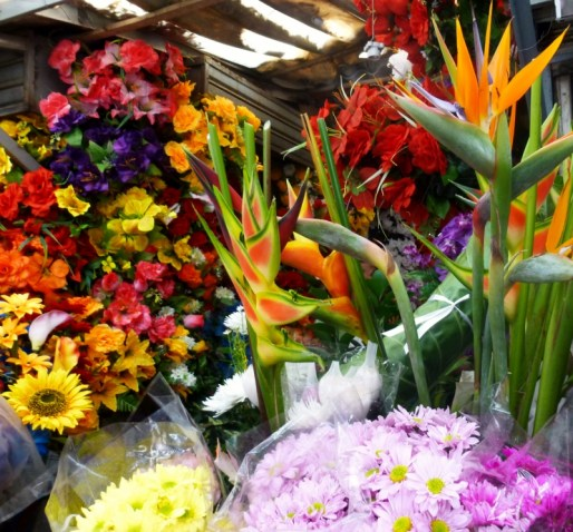 flowers for sale, Cartagena