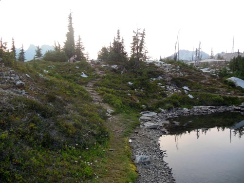 A view of the campsite