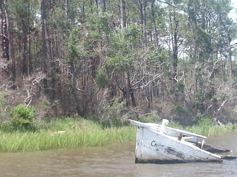 Abandoned boat on the Fowl.
