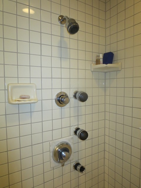 This shower has 4, count 'em 4, showerheads.  Awesome shower.