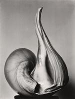 Brett Weston