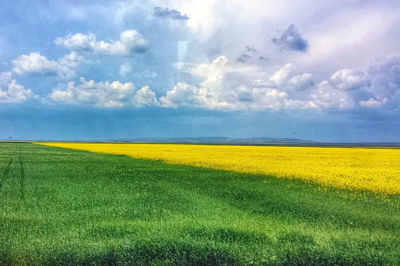 yellow-blue-green