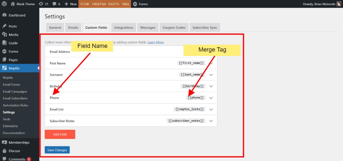 Noptin custom fields overview page