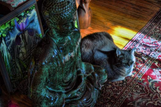 Nora With Buddha - Photo © Burnell Yow!