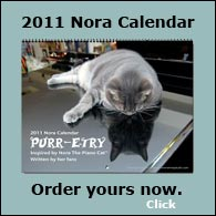 Nora Calendar 2011 Sidebar Graphic