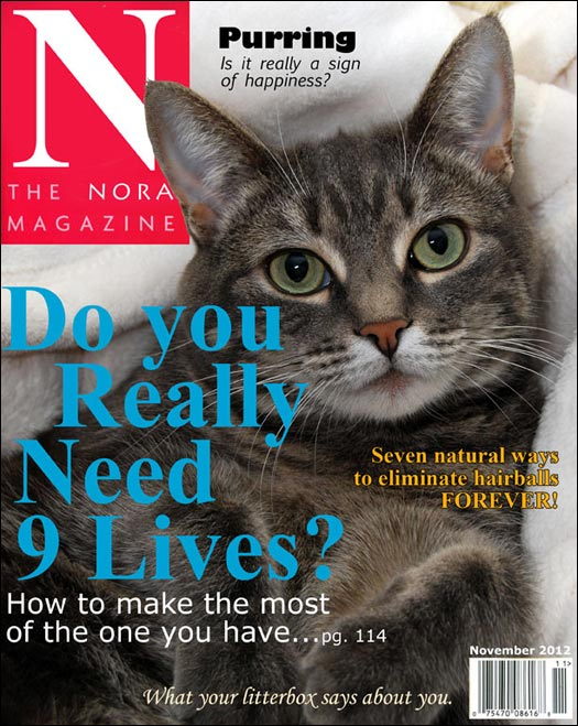 The Nora Magazine