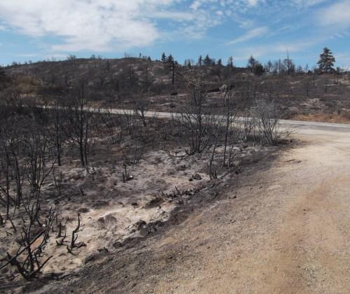 Laguna Fires 2