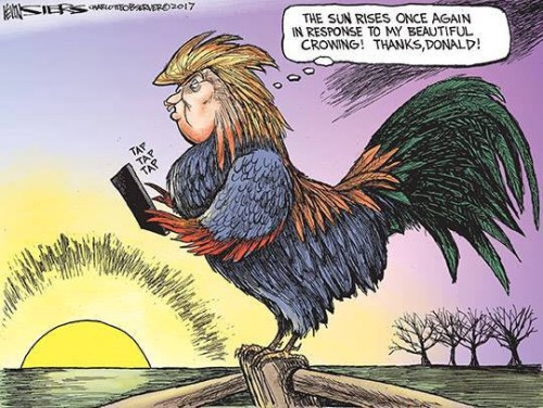 trump-crowing
