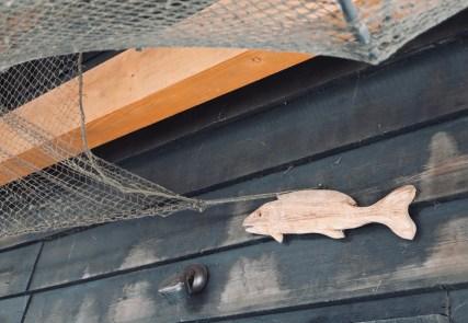 Müritz-fischer