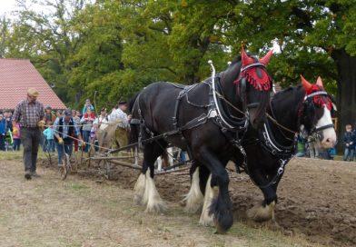 """""""Herbstfest"""" am 29. und 30. September im Tierpark Sababurg"""