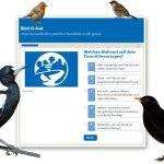 Entscheidungshilfe für bisher noch unentschlossene Vogelfreund*innen