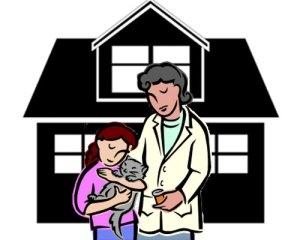 Tiere-suchen-ein-Zuhause